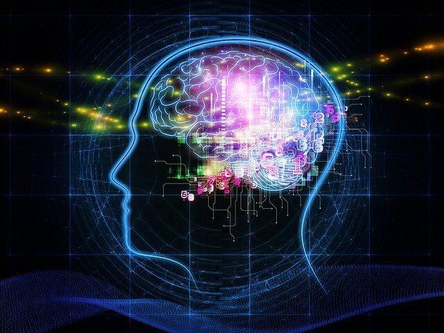 brain willpower